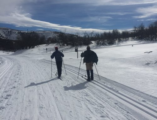 Cross Country Nordic Skiing